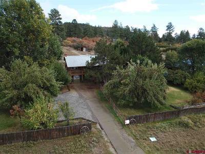 La Plata County Single Family Home For Sale: 1774 County Road 501