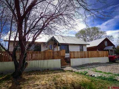 Gunnison Single Family Home For Sale: 612 N 12th Street