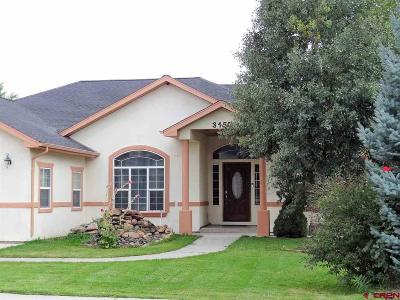 Montrose Single Family Home UC/Contingent/Call LB: 3150 Silver Fox Drive