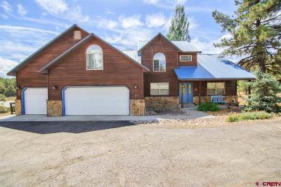 Pagosa Springs Single Family Home For Sale: 168 Capitan Circle