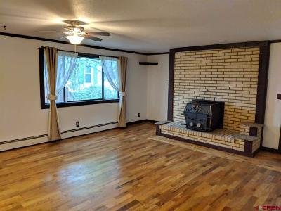Montrose Single Family Home UC/Contingent/Call LB: 1115 N 1st Street