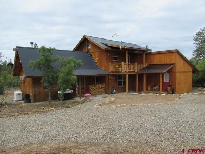 Pagosa Springs Single Family Home For Sale: 64 Jakes Court