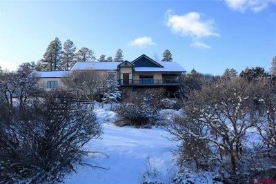 Pagosa Springs Single Family Home For Sale: 175 Haley Place