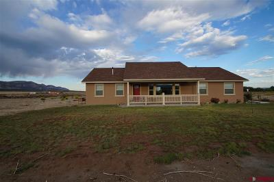 Pagosa Springs Single Family Home Sold: 8201 Road 29.4 Loop