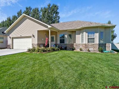 Montrose Single Family Home For Sale: 1800 American Way