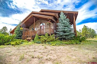 Pagosa Springs Single Family Home For Sale: 369 Saddlehorn Place