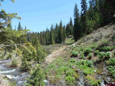 Crested Butte Residential Lots & Land For Sale: Copley Lake Venango Road