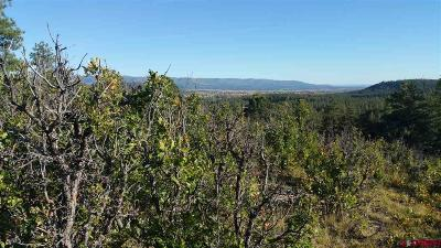 Bayfield Residential Lots & Land For Sale: 255 Talon Court