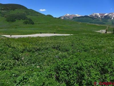 Mt. Crested Butte Residential Lots & Land For Sale: 924 Gothic Road