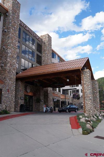 Mt. Crested Butte Condo/Townhouse For Sale: 6 Emmons Road #222