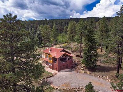 Durango Single Family Home For Sale: 115 Saddle Trail