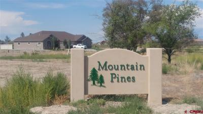 Montrose Single Family Home For Sale: 3 Glacier Drive