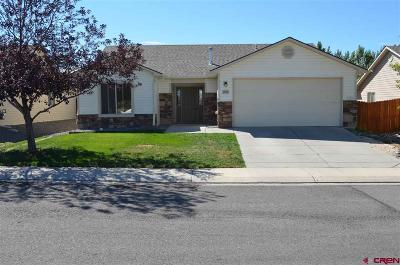 Montrose Single Family Home For Sale: 1522 Big Horn Street