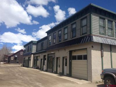 Crested Butte Condo/Townhouse For Sale: 315 Belleview Avenue #2C
