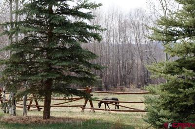Horse River Ranch Residential Lots & Land For Sale: 509 Mountain View Trail