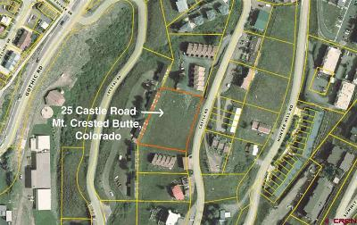 Residential Lots & Land For Sale: 25 Castle Road