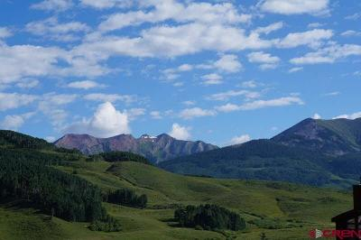 Mt. Crested Butte Residential Lots & Land For Sale: 893 Gothic Road