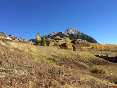 Mt. Crested Butte Residential Lots & Land For Sale: 47 Whetstone Road