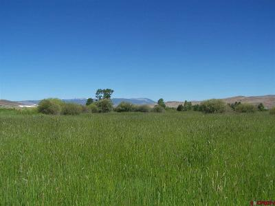 Lost Miner Ranch Residential Lots & Land For Sale: 607 Winze Road