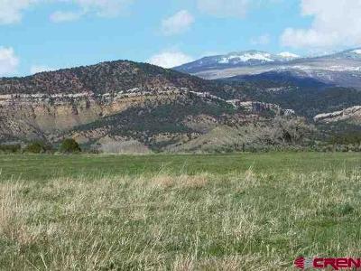 Cedaredge Residential Lots & Land For Sale: 27341 Cedar Mesa Road