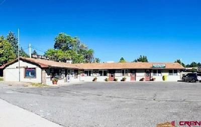 Cedaredge Commercial For Sale: 110 SE Frontier Avenue