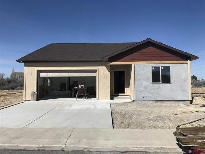 Montrose County Single Family Home For Sale: 12 Glacier Drive