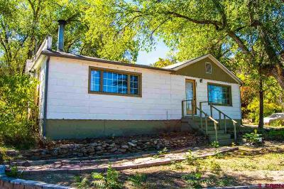 Single Family Home For Sale: 110 Colorado Avenue