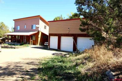 Durango Single Family Home For Sale: 862 Rainbow Road