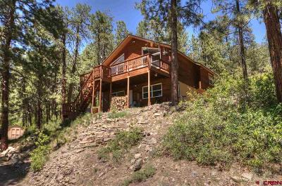 Bayfield Single Family Home For Sale: 202 Hillside Circle