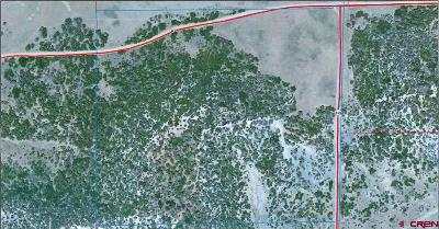 Mancos Residential Lots & Land For Sale: Road P.2