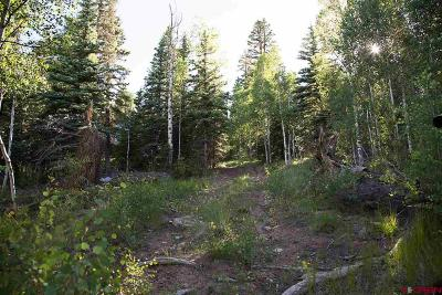 Creede Residential Lots & Land For Sale: 32008 Elk Trail Ln