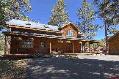 La Plata County Single Family Home UC/Contingent/Call LB: 754 Pine River Ranch