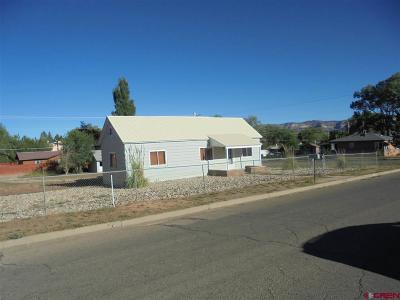 Cortez Single Family Home For Sale: 246 S Harrison