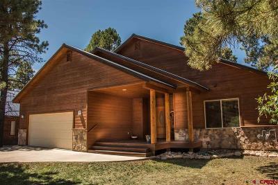 Pagosa Springs Single Family Home For Sale: 80 Sumac Court
