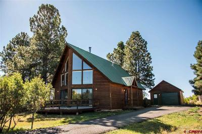 Pagosa Springs Single Family Home For Sale: 170 Cimarrona Circle