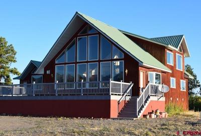 Ouray County Single Family Home For Sale: 1161 Highland Drive