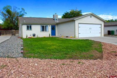 Montrose Single Family Home NEW: 1905 Ouray Drive
