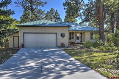 Durango Single Family Home UC/Contingent/Call LB: 422 Oak Drive