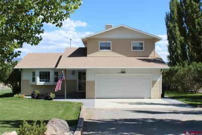 Delta County, Montrose County Single Family Home For Sale: 8842 6085 Road