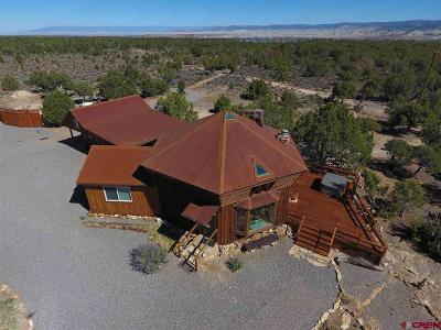 Ouray County Single Family Home For Sale: 1230 Tiyoweh Trail