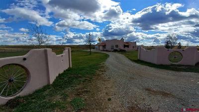 La Plata County Single Family Home For Sale: 436 Prospect Drive