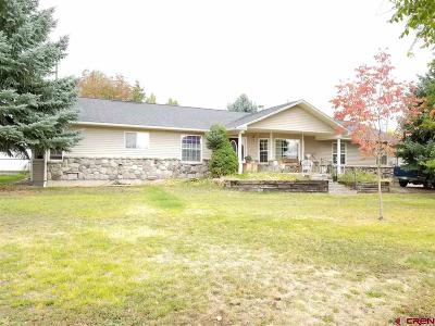 Delta County, Montrose County Single Family Home For Sale: 865 S Grand Mesa Drive