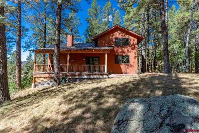 Pagosa Springs Single Family Home For Sale: 383 Crossroads Drive