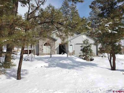 Pagosa Springs Single Family Home For Sale: 221 Aspenglow Boulevard #A