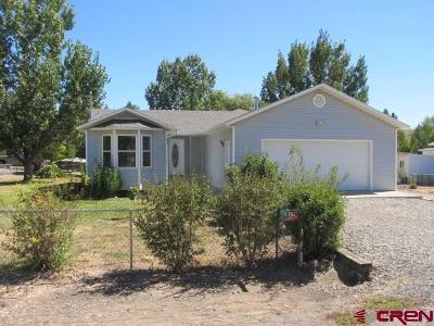 Delta County, Montrose County Single Family Home NEW: 11980 2100 Road