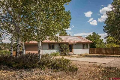 Pagosa Springs Single Family Home UC/Contingent/Call LB: 22 Tonto Ct.