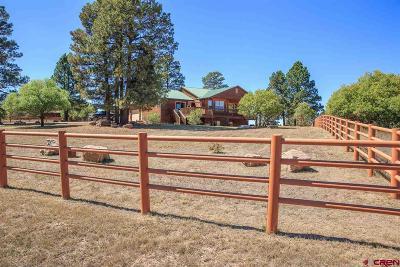 Pagosa Springs Single Family Home For Sale: 202 E McCabe Street