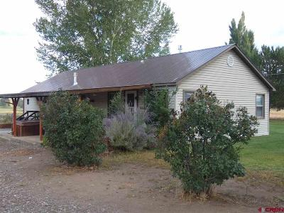 Montrose County Single Family Home NEW: 14231 6100 Road