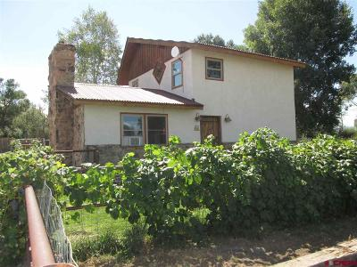 Delta County, Montrose County Single Family Home NEW: 61054 Lasalle Road