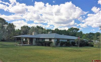 Delta County, Montrose County Single Family Home NEW: 63126 La Salle Road